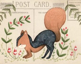 Ansichtkaart Eekhoorn