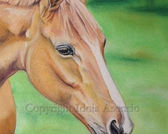 Retrato animales, hecho a mano de tus fotos, a pastel, original, dibujo realista, familia, niños, mascotas