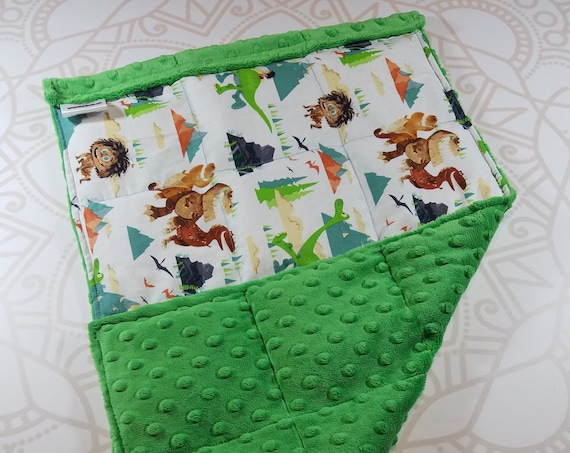 READY TO SHIP, Dinosaur Front, Green Minky Back, Lap Pad/Weighted Blanket, 3 pounds, 14x22, Small Weighted Blanket