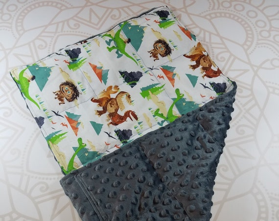 READY TO SHIP, Dinosaur Front, Charcoal Minky Back, Lap Pad/Weighted Blanket, 3 pounds, 14x22, Small Weighted Blanket