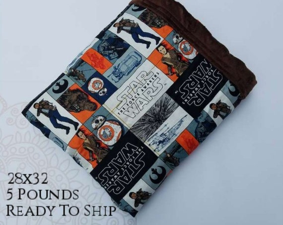 READY to SHIP, Weighted Blanket, 28x32-5 Pounds, Movie Woven Cotton Front, Brown Minky Back, Sensory Blanket, Calming Blanket,