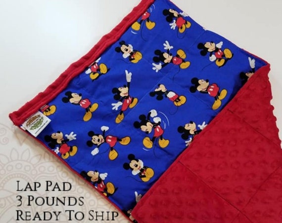 READY TO SHIP, Character Front, Red Minky Back, Lap Pad/Weighted Blanket, 3 pounds, 14x22, Small Weighted Blanket