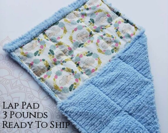 READY TO SHIP, Hedgehog, Light Blue Minky, Weighted, Lap Pad/Travel Weighted Blanket, 3 pounds, 14.5x22, Small Weighted Blanket