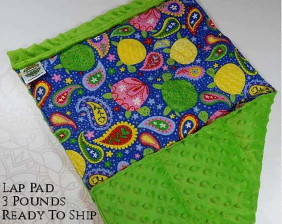 READY TO SHIP, Paisley Turtle Front, Green Minky Back, Lap Pad/Weighted Blanket, 3 pounds, 14x22, Small Weighted Blanket