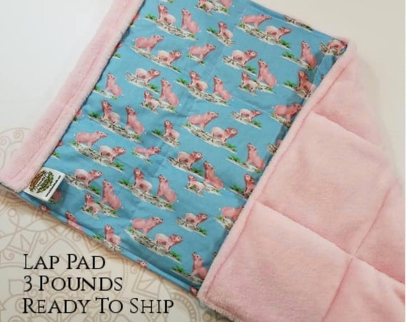 READY TO SHIP, Pink Pig, Pink smooth minky, Weighted, Lap Pad/Weighted Blanket, 3 pounds, 14x22, Small Weighted Blanket