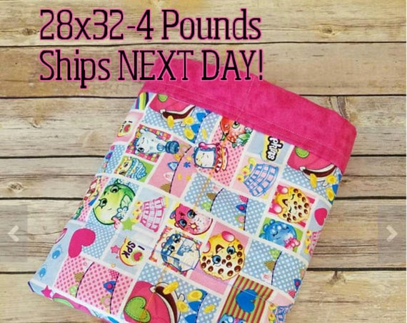 Character, 4 Pound, WEIGHTED BLANKET, 4 pounds, 28x32, for Autism, Sensory, ADHD, Calming, Anxiety,