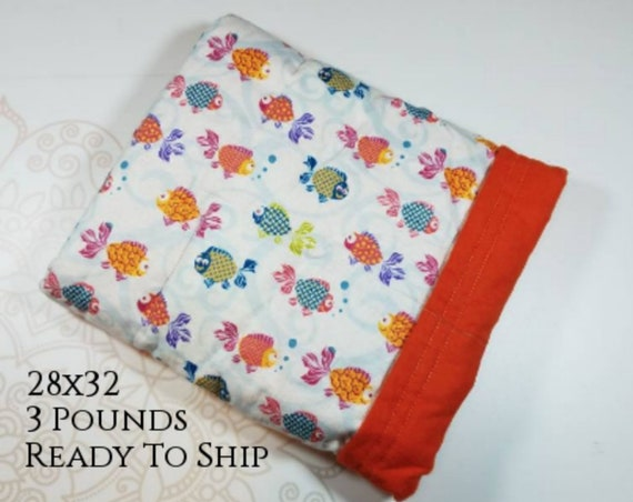 Colorful Fish, 3 Pound, WEIGHTED BLANKET, 3 pounds, 28x32 for Autism, Sensory, ADHD, Calming, Anxiety,