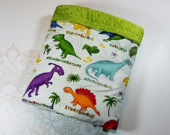 Dinosaur, Minky, Weighted Blanket, 3 pound, Ready To Ship, 28x32, for Autism, Sensory, ADHD, Calming, Anxiety,