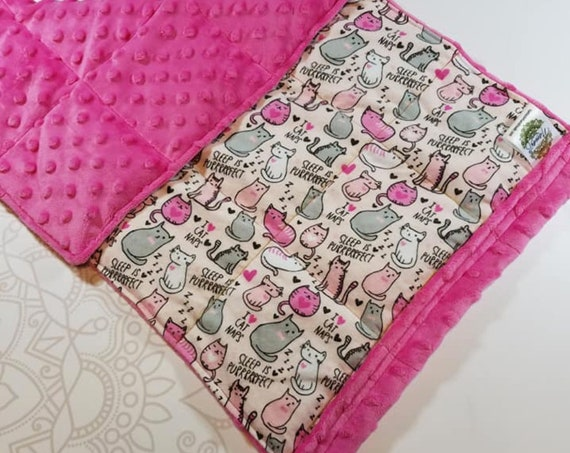 READY TO SHIP, Sleepy Cat Flannel Front, Hot Pink Minky Back, Lap Pad/Weighted Blanket, 3 pounds, 14x22, Small Weighted Blanket