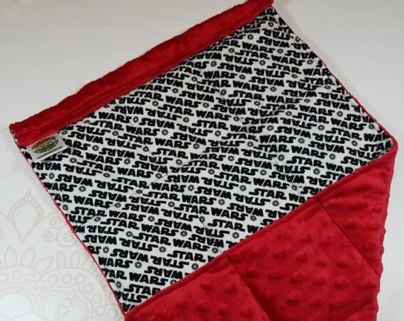 READY TO SHIP, Cotton Flanel Front, Red Minky Back, Lap Pad/Weighted Blanket, 3 pounds, 14x22, Small Weighted Blanket