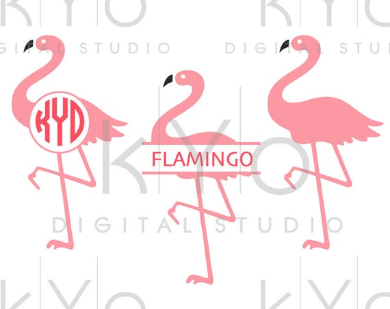 Flamingo svg Flamingo Monogram svg Flamingo split svg Png Studio3 Dxf Commercial use svg for Cricut Silhouette files
