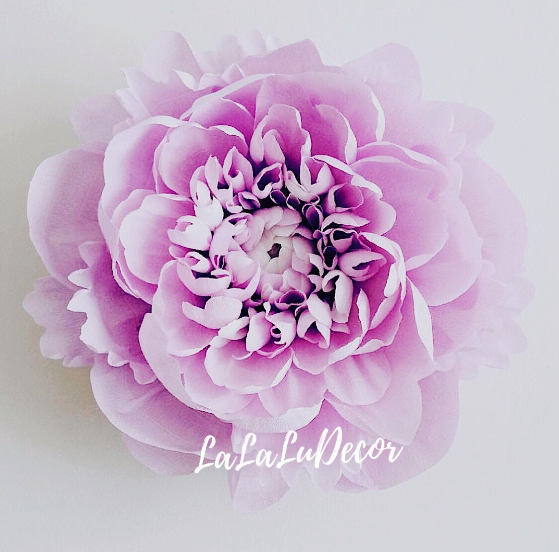 Peony Crepe Paper Flower Wall Decoration Etsy