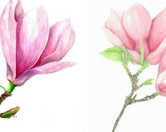 Magnolia Set of ready to frame prints