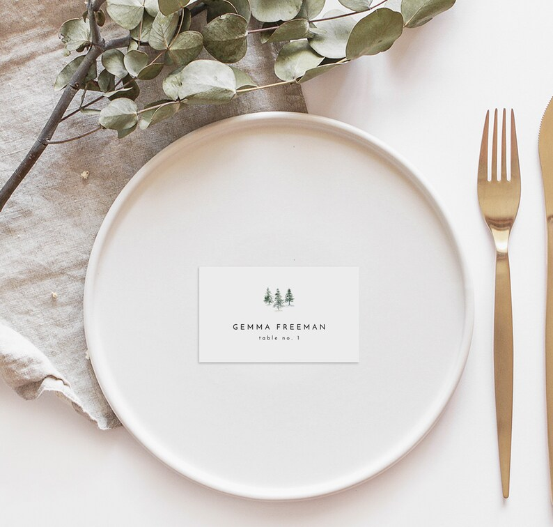 Winter Wedding Table Cards Printable Wedding Place Cards Minimal Rustic Wedding Place Card Template Editable Escort Name Cards