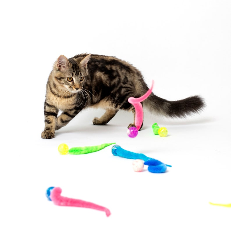 Super bouncy Wiggly Ball  cat toy with wiggly tail fun cat image 0