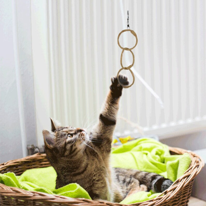 Oh-Ring Natural Cat Toy and Wand Attachment image 0
