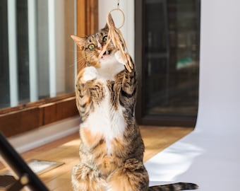 Flutter Ring - eco-friendly, all natural cat toy and wand attachment (wand sold separately)
