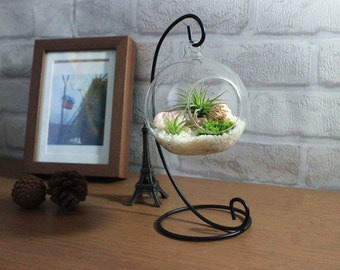 office desk decoration items diy etsy home decoration office desk decor terrarium kit with quartz sand air plants green moss sea urchin and big seashells for birthday gift decor