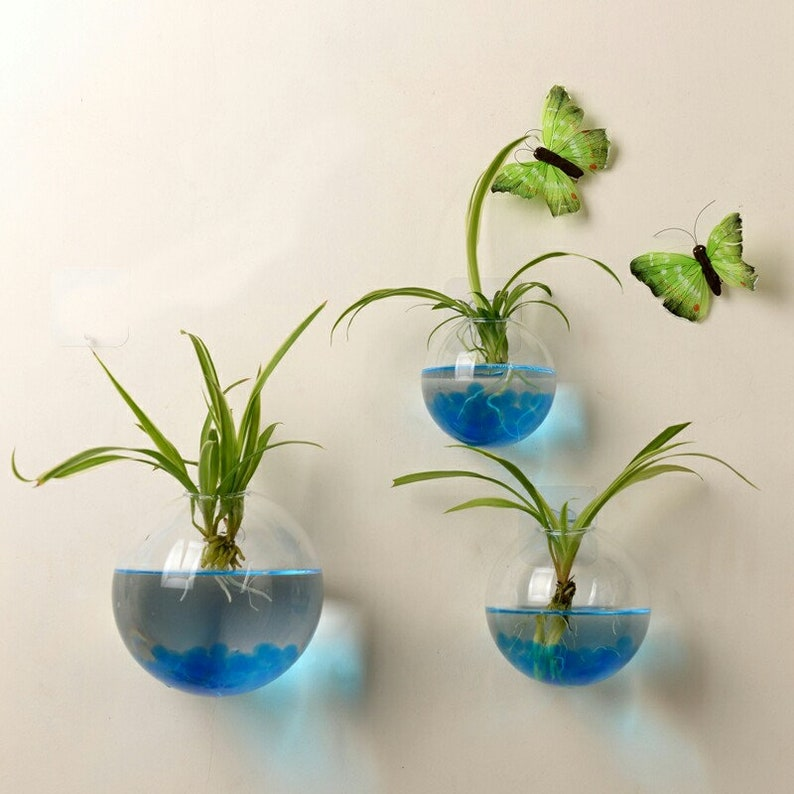 Upper Opening Bubble Wall Terrariums Set of 5 Blown Glass Wall Vase for Water Plants or Flowers Living Wall Decor for Bedroom or Living Room