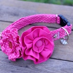 Pink Polka Dot Dog Collar Set - Flowers, Dog Collars, Dog Accessories , Spring, Dogs, Puppies, Collar Flair, Bling