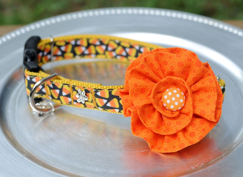 Unique Candy Corn DOG COLLAR with Flower or Bow Tie Dog image 0
