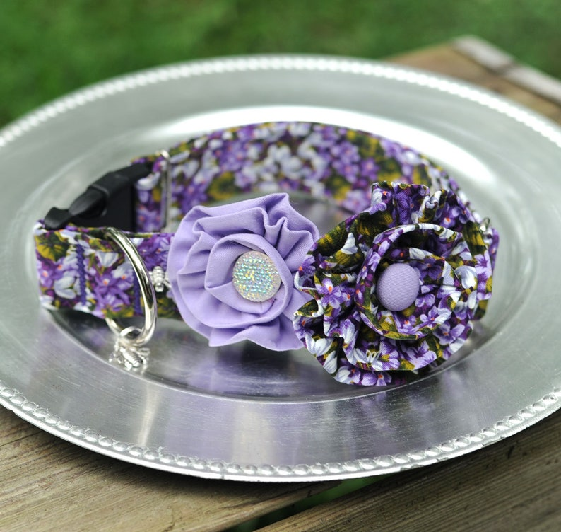 Purple Irises Dog Collar With 2 Removable Fabric Flowers Dog image 0