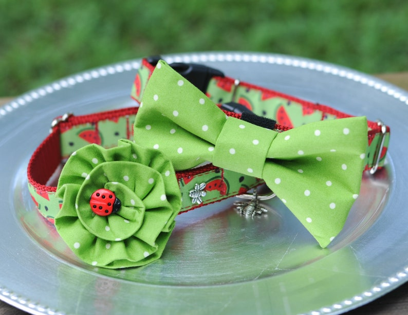 Red & Green Watermelon DOG COLLAR with Flower or Bow Tie Dog image 0