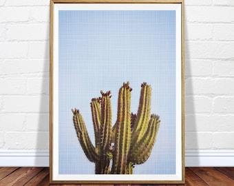 Cactus printable art - cacti downloadable poster - desert art print - Arizona art - Mexico - cactus decor - printable decor - DIGITAL POSTER