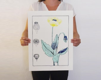 Shows flower and botanical - blue, gray, yellow - linocut by hand - 47 x 35 cm - poppy / linocut Charly thing