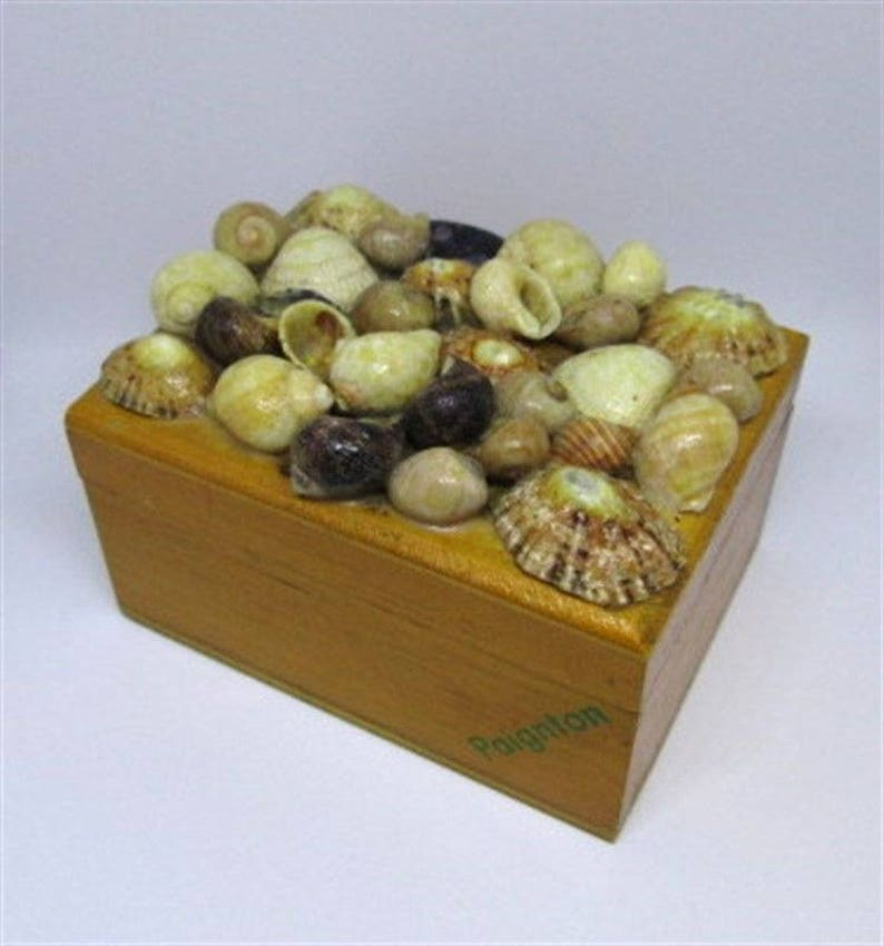 Paignton Wooden Jewelry Box Casket With Shells Used Condition