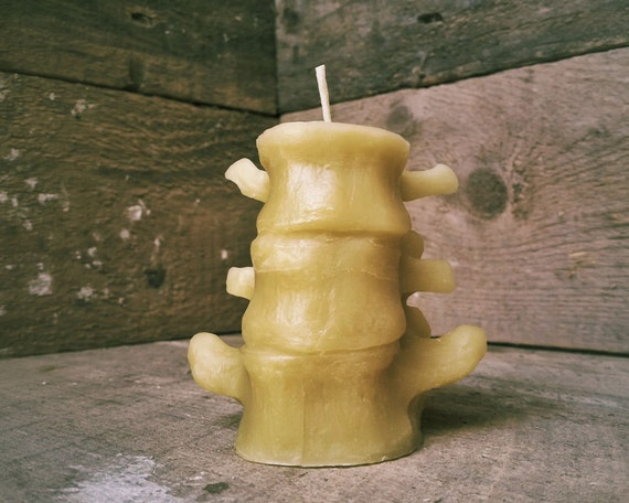 Columna vertebral humana pequeña vela vela de cera de abejas