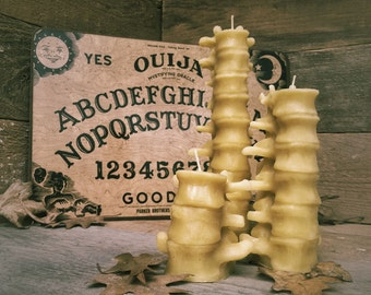 Beeswax Human Spine Candles, (Larger Set of 3)