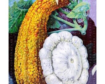 Kitchen Decor Antique Botanical Print Digital Download. Vintage Poster Vegetables Seeds Advert