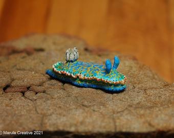 Spott the Nudibranch (Hypselodoris bayeri) Black-Spotted Sea Goddess