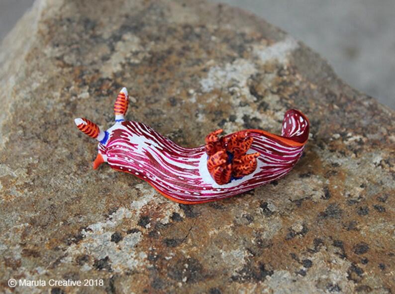 Stonei the Nudibranch Nembrotha livingstonei