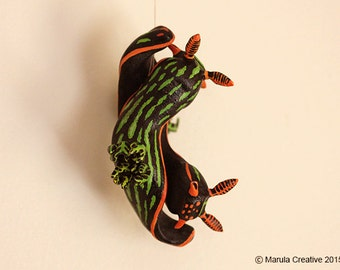 Yana the Nudibranch (Nembrotha kubaryana)