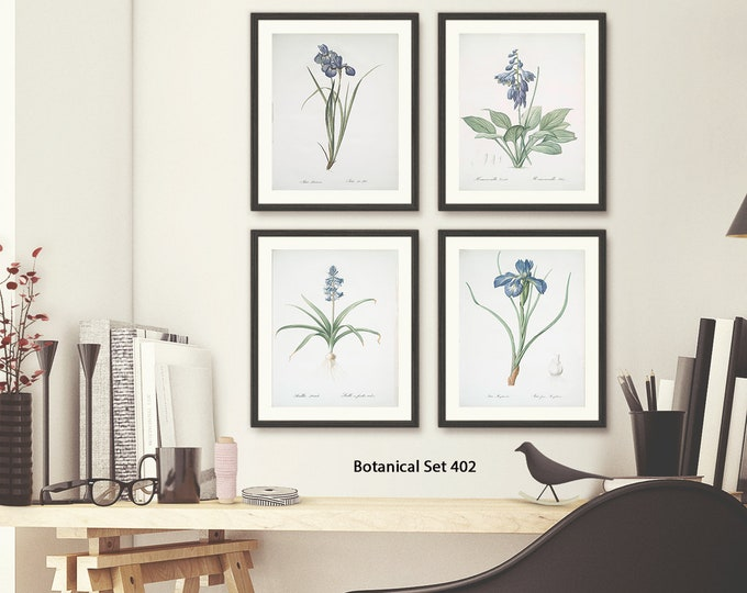 Featured listing image: Botanical Print Set, Framed Art, Set of 4 Prints, Modern Farmhouse Decor, Botanical Wall Art, Bathroom Wall Art, Vintage Floral Prints