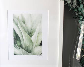 """Agave Watercolor Succulent Painting   8x10"""" Reproduction of """"Agave"""" painting"""