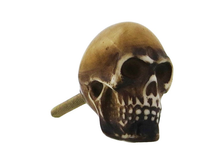 Brown Skull Resin Knob Pull for Cabinets, Drawers, Dressers, Doors & Furniture