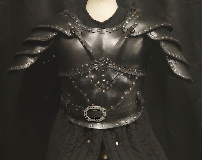Armor of The Witcher