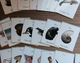 Ocean alphabet cards, nautical wall cards, nursery wall decor, alphabet flash cards