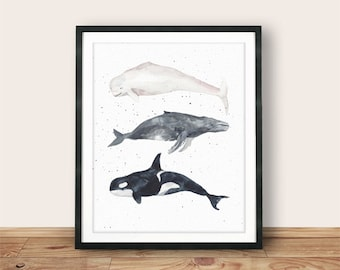 Instant Download, Beluga Whale, Humpback Whale, Orca, 8x10, Nautical Whales, watercolor, Whale Art Print, Printable Wall Art, Wall Decor