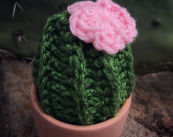 Crocheted Cactus | Home Décor | FREE shipping