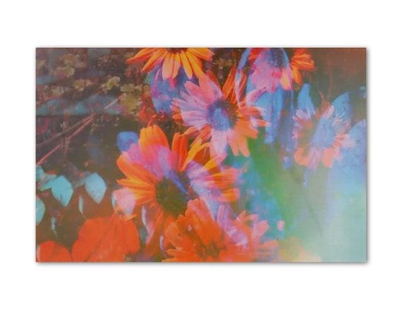 'Summer Daydream' Print