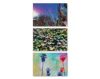 LA Postcard Set, Art Postcards, California Postcards, Echo Park Postcards, Palm Trees, Lily Pads, Echo Park, Psychedelic Art, Olivia D'Orazi