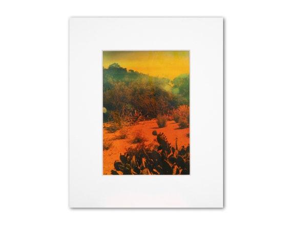 'Cactus' Metallic Print