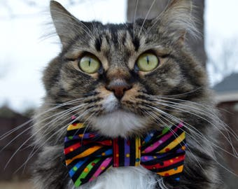 Cat bow tie collar, celebration cat collar, Birthday Cat Collar with bow tie,  Cat bow tie collar for party, colorful cat bow tie, cat gift