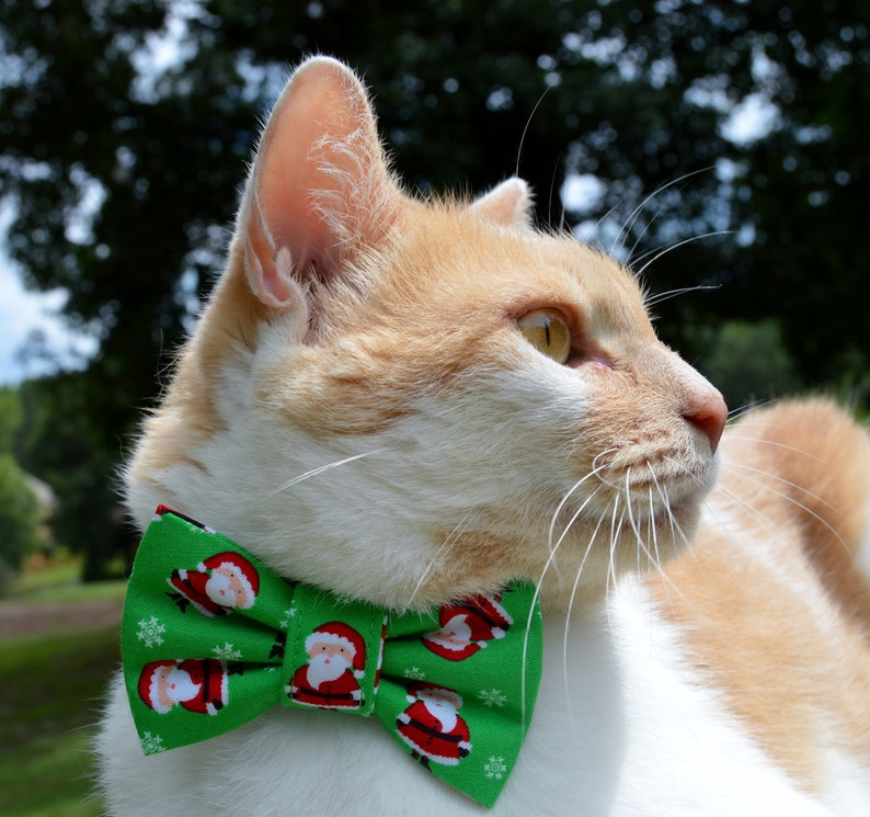 a955b383cb29d Collier chat père Noël collier de chat avec noeud Noël chat | Etsy