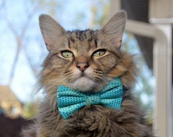 Summer ocean cat bow tie, summer cat bow tie, summer cat collar, cat bow tie, cat collar, kitten bow tie, blue cat bow tie