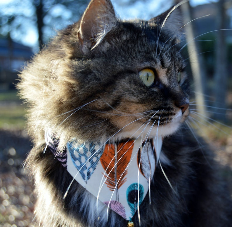 arrow cat bandanas 2 reversible slip over collar cat bandanas nature cat bandana bandana for cat 2 Birds of a feather cat bandanas